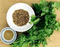 Certified Organic Herbs for your Garden