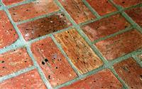 Chicago Common Eco Brick Flooring