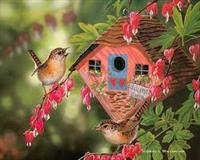 Eco-friendly Wren Houses