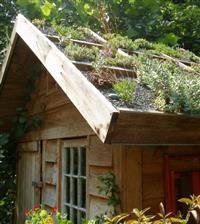 Energy Efficient Living Roofs