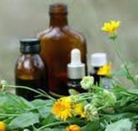 Holistic Naturopathic Medicine
