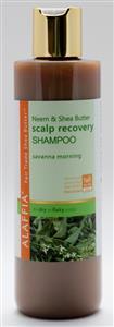 Neem and Shea Scalp Recovery Organic Shampoo
