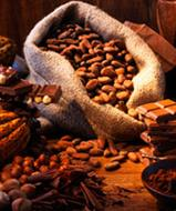 Sustainable Cocoa Beans